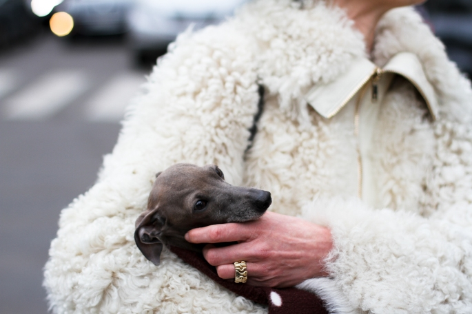 clochet-streetstyle-outfit-paris-fashion-week-nike-pluffy-coat-2